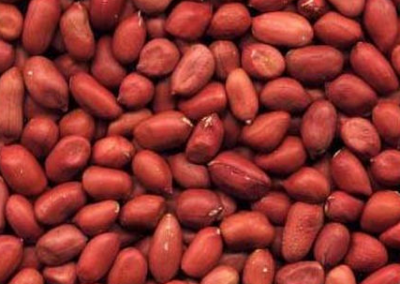 Unssulted Small Raw Red Skin Peanuts